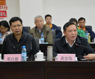 广西自治区地质矿产勘查开发局副局长黄宏伟发言