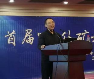 吴珍汉:境外地质矿产信息公益性服务