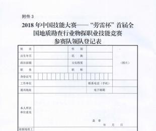 2018年中国技能大赛参赛队领队登记表